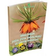 İhraç Edilen Doğal Çiçek Soğanlarımız ve Üretim Teknikleri