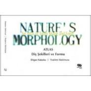 Doğanın Morfolojisi Dişlerin Şekil ve Form Atlası