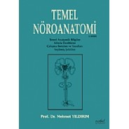 Temel Nöroanatomi