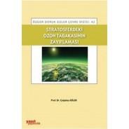 Stratosferdeki Ozon Tabakasının Zayıflaması