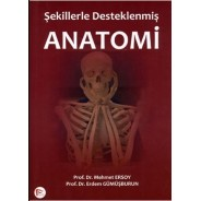 Şekillerle Desteklenmiş Anatomi
