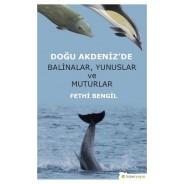 Doğu Akdeniz'de Balinalar Yunuslar ve Muturlar