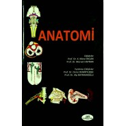 Anatomi / Hacettepe