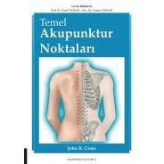 Temel Akupunktur Noktaları