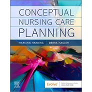Conceptual Nursing Care Planning