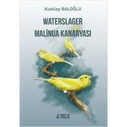 Waterslager Malinua Kanaryası: Ötümü-Bakımı-Eğitimi-Beslenmesi ve Hastalıkları